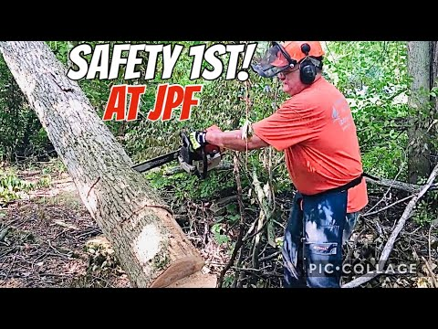 Смотрите сегодня Felling Hung Up Leaner Trees w/ near misses