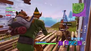 FORTNITE-NEW BUG OF THE SHADOWY STONE