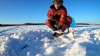 #23 Рибалка в сонячний день!!!Зимова риболовля 2017-2018