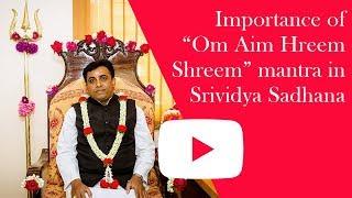 Importance Of Om Aim Hreem Shreem Mantra In Srividya Sadhana Sri Sivapremananda