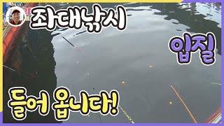 바다좌대낚시터 황산바다좌대 가족낚시 마릿수 영상밀루유떼