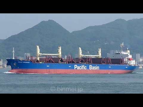 MOUNT HIKURANGI - PACIFIC BASIN SHIPPING bulk carrier