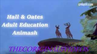Animash Adult Education Hall & Oates