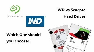 WD vs Seagate - Which One should you Choose - Featuring Eddie the WebGuy