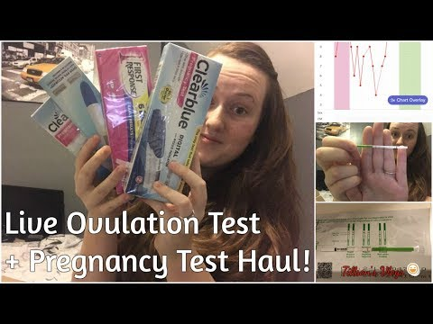TTC Journey, Live Ovulation Test CD19 + Pregnancy Test Haul, Infertility - Tillson's Vlogs