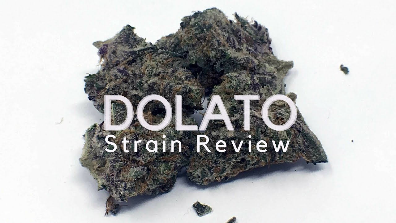 Dolato Weed Review (Do,Si,Dos X Gelato) , ISMOKE
