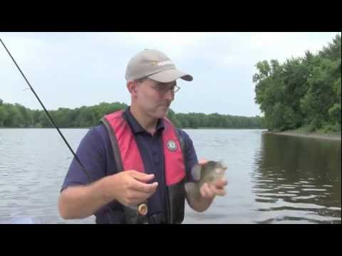 Chasing Summer Crappies With Hi-Vis Sufix 832