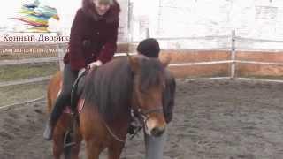 """Конный спорт: Кривой Рог (обучение, занятия в """"Конном Дворике"""")"""