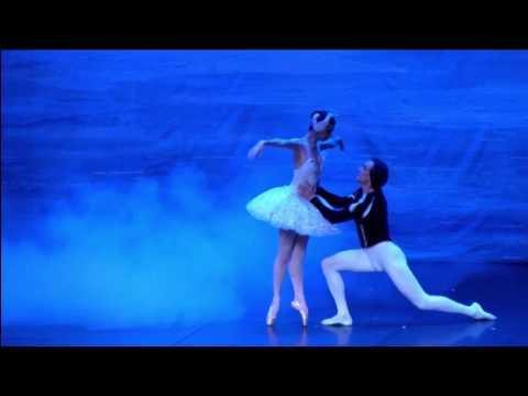 Schwanensee. Odette und Siegfried. 2 Akt.