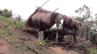 Peb Hmoob kev ua liaj teb nyob Laos 2016 part 1