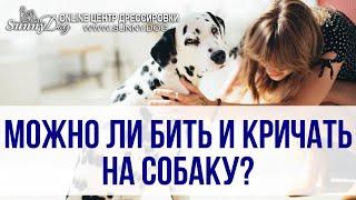 Можно ли наказывать и кричать на собаку? Как правильно воспитывать собак?