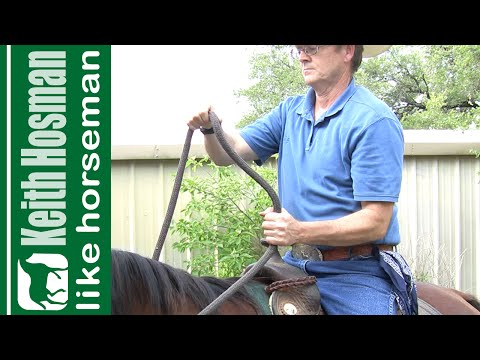 How to Hold the Reins & Steer a Horse (SNAFFLE BITS ONLY)