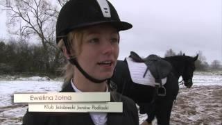 Łapać lisa ! - www.pulsmiasta.tv