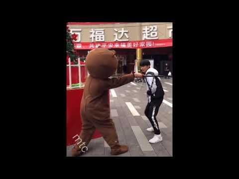 медведь на TikTok китайский