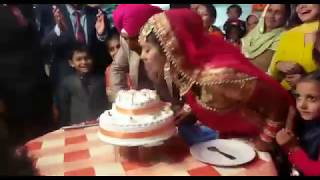 Indian marriage cake cutt funny video