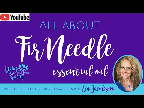 all-about-fir-needle-essential-oil