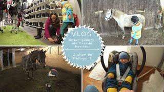 Shopping HAUL |Alltag als Familie mit Tieren |VLOG |Kathis Daily Life