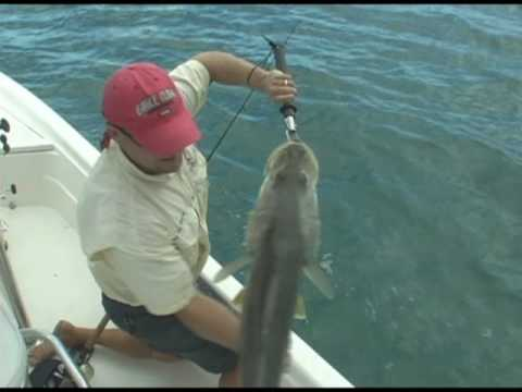 Jupiter Snook! Fishing Videos Shows Clips Charters