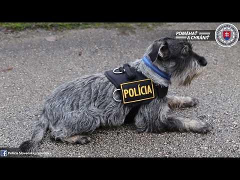 Unikátny Policajný Pes