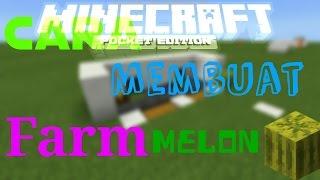 cara membikin farm melon otomatis || Tutorial || Minecraft PE Indonesia