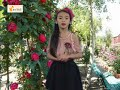 Đào tạo MC Vietskill - Thực hành trường quay MC N07HĐ - MC HÀ MY