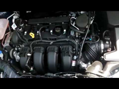 2016 Ford Focus SE - 2.0L V4 Engine - Normal Running Sounds