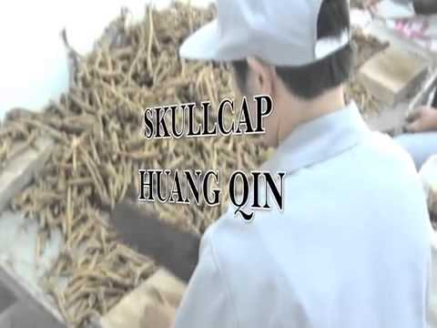 Lisha! China Doc-Series: Processing Chinese Herbs