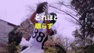 東京大学アメリカンフットボールサークルVIKINGSの2017年度新歓PVです。...