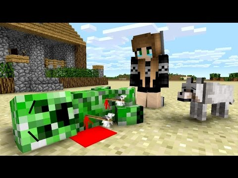 Creeper Life  Minecraft Animation