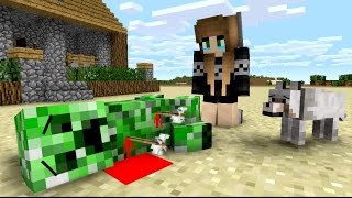 Repeat youtube video Creeper Life - Minecraft Animation