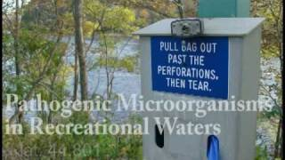 Pathogenic Microorganisms in Recreational Waters