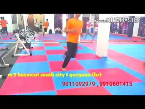 Gurgaon delhi noida martial art