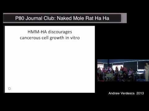 P80 Journal Club: Verdesca and the Naked Mole Rat Ha Ha