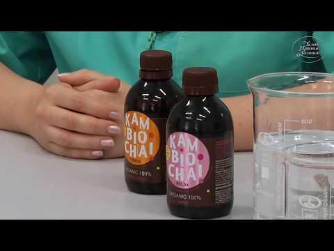Преимущества и вред напитка Kombucha
