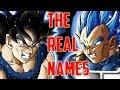 FINALLY Mastered Ultra Instinct Goku And Vegeta New Form REAL Names REVEALED