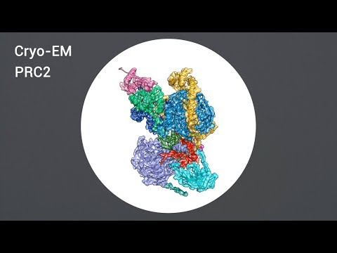 Structures of human PRC2 with its cofactors AEBP2 and JARID2