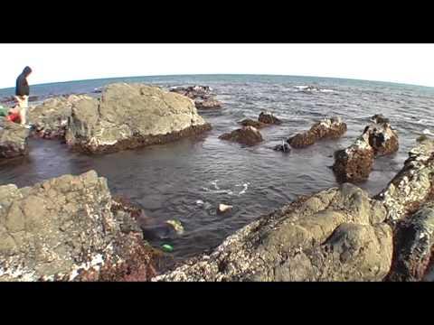 Red Rocks 2012