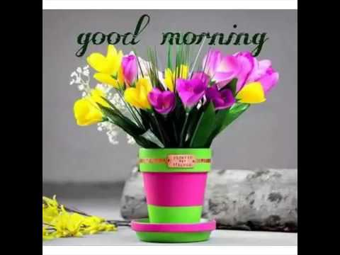 Good Morning To All My Friends Youtube