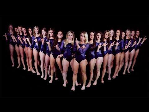 UW-Stout Women's Gymnastics 2014 Season