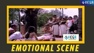 Jayabarathi and Adoor Bhasi Emotional Scene ||  Guruvayur Kesavan