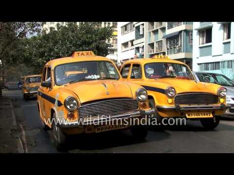 Yellow Hindustan Ambassador Taxi cabs of Kolkata