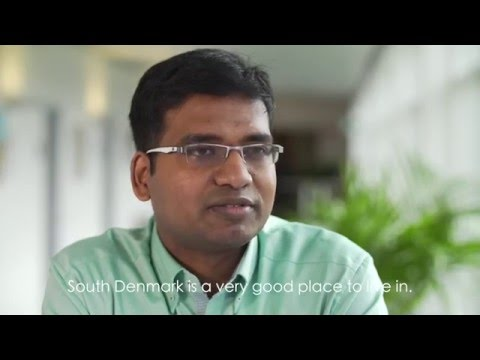 Career in Southern Denmark: Ravi Gangam (Senior Telecom Engineer) from India