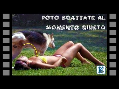 5 Foto Scattate Al Momento Giusto Cinemapichollu