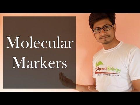 Molecular Markers | genetic Markers like SSR, ISSR, microsattelite  and minisattelite