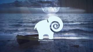 TOP MUSIC | Celtic Harp  | THE QUIET FOREST  | 365 feeling sound