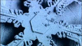 Snowflakes, amazing short video, thanks BBC  :)