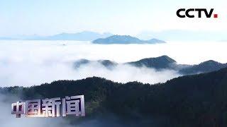 [中国新闻] 安徽歙县云海奇观持续5小时 | CCTV中文国际