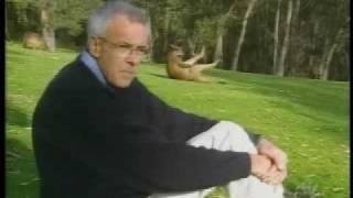 Przyłapany kangur mistrz 2 planu