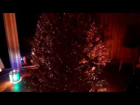 Grove of Aluminum Christmas Trees 2016