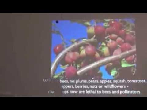 Graham White Neonicotinoids Presentation